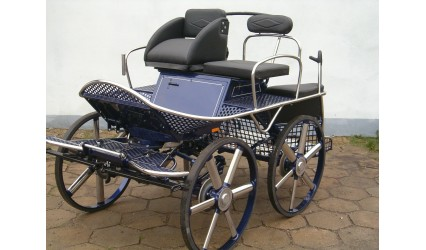 MS160
