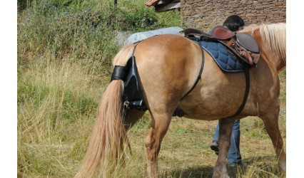 Sac à crottin d'équitation